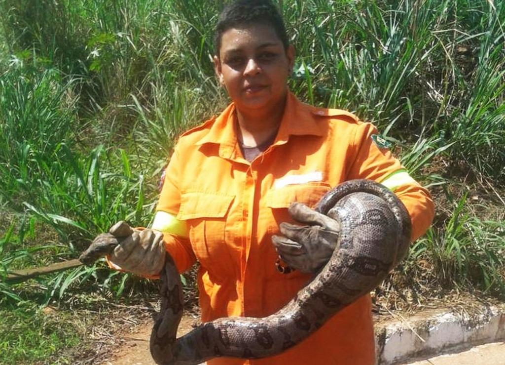According to data from INPE (National Institute for Space Research), 18,557 fires broke out in September. The worst month was August. Destruction in the Amazon increased by 222 per cent compared with the same period last year. Here, a volunteer holds a rescued snake. Photo: Taliane Freitas / Personal Archive