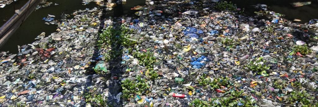 Prime Minister Modi says the phasing out of single-use plastics in India is necessary not just for the environment but also for aquatic life. Photo: @EnvironmentLife/Twitter