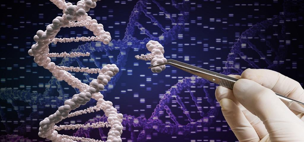 CRISPR gene editing technology. Photo: Getty Images
