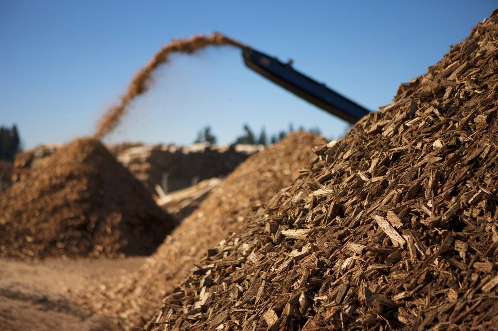 biomass fuel. Photo: Getty Images