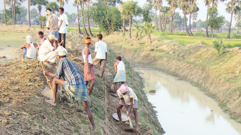 गया जिले में धान फाउंडेशन के प्रयासों से आहर पइन प्रणाली को पुनर्जीवित किया गया (सौजन्य: धान फाउंडेशन)