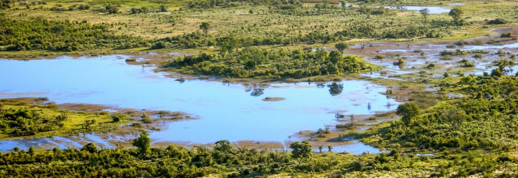 A study claims the first humans lived in a wetland around what is now northern Botswana. Photo: Prill/Shutterstock