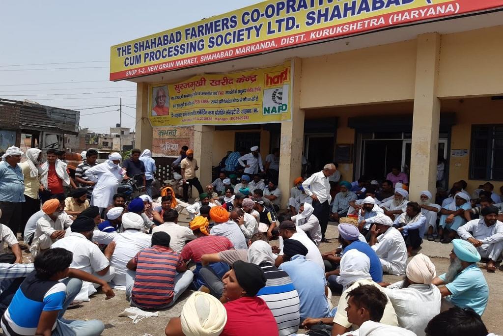 हरियाणा के फतेहाबाद में प्रदर्शन करते किसान। फोटो: मलिक असगर हाशमी
