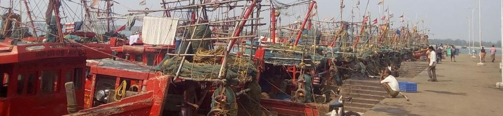 Fishing vessels moored in Paradip port, Jagatsinghpur. Photo: Ashis Senapati