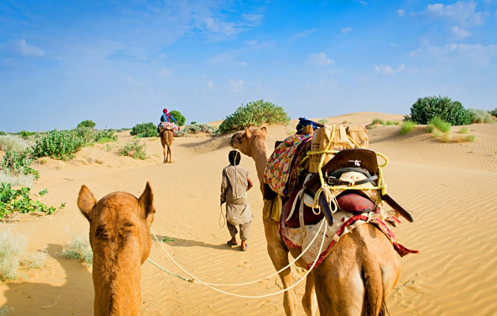 Camel herders in Rajasthan. Photo: Getty Images