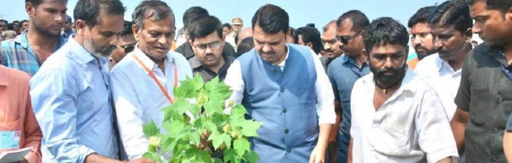 Chief Minister Devendra Fadnavis inspects farmer's destroyed crop. Photo: Ashwin Aghor