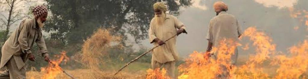 Stubble fires in Punjab. Photo: Wikimedia Commons