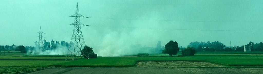 Stubble being burnt in a field in Kurukshetra, Haryana in late September. Photo: @Daksh280 / Twitter
