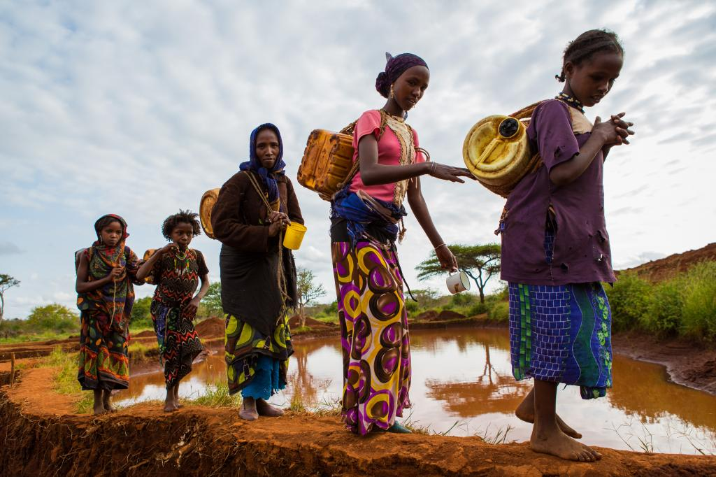 Women and girls in Gayo village, Ehtiopia collect water from a rain water pool which is purified with tablets before use. Photo: Shutterstock