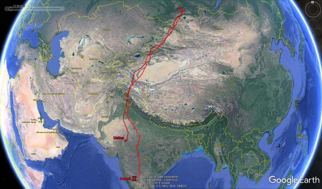 Two ospreys flew from Russia's Sayano-Shushensky State Nature Reserve to India this winter and were satellite-tagged