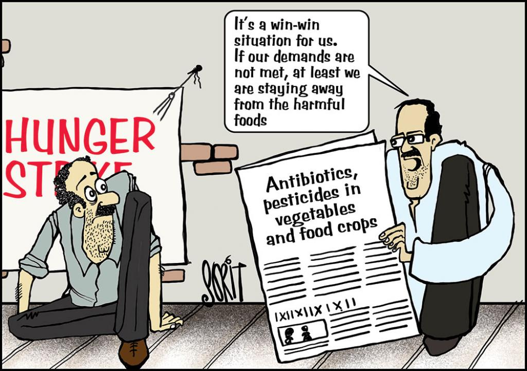 Antibiotics, pesticides in vegetables and food crops