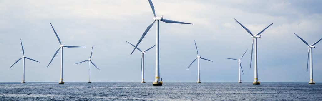 An offshore wind farm. Photo: Getty Images
