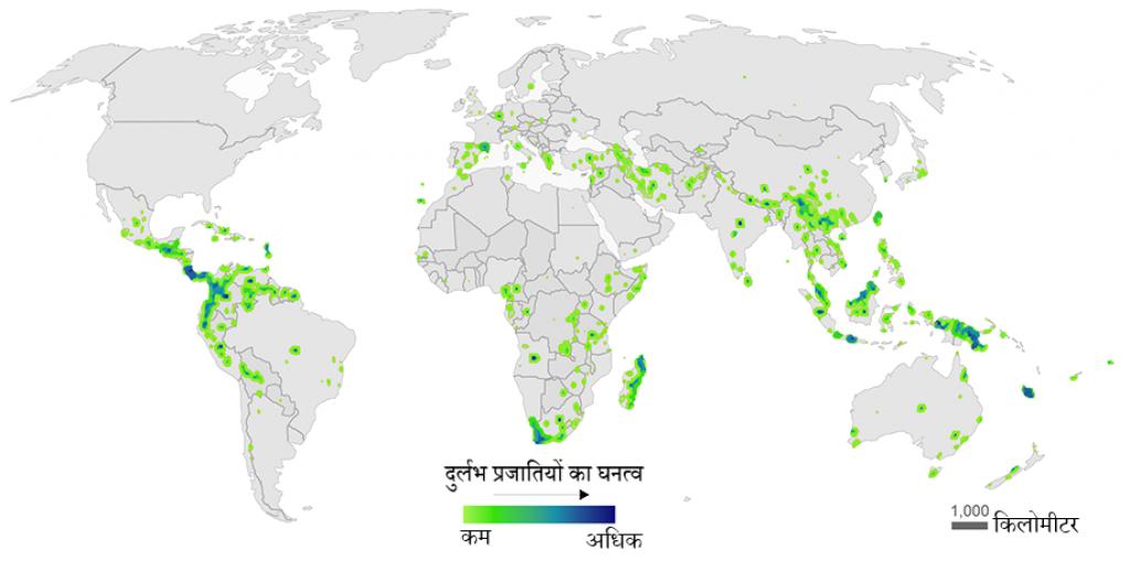 मानचित्र: वैश्विक स्तर पर पौधों की दुर्लभ प्रजातियों का घनत्व