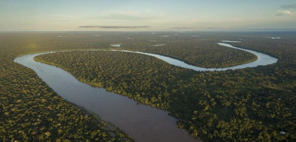 Amazonian deforestation can trigger abrupt carbon releases into the atmosphere, amplify climate change and reduce remaining emission budgets. Photo: Getty Images