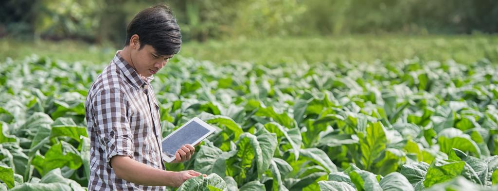 Nature and technology can combine to help farms of the future nourish the earth and its inhabitants. Photo: SimplyDay/Shutterstock