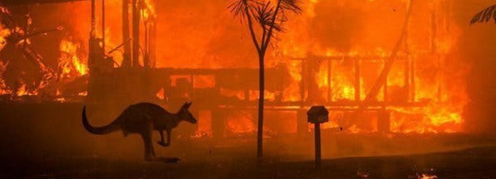 Australia bushfire. Photo: @CodyRhodes