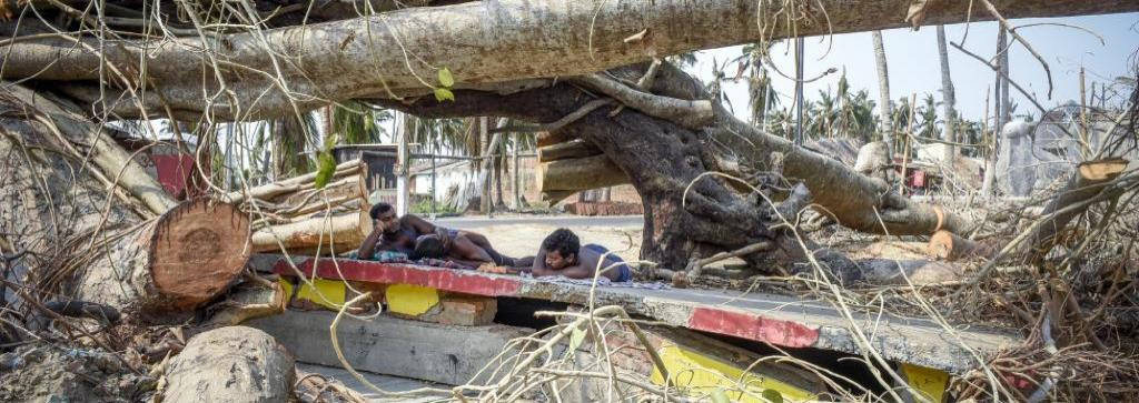 Destruction after Cyclone Fani. Photo: Adithyan PC