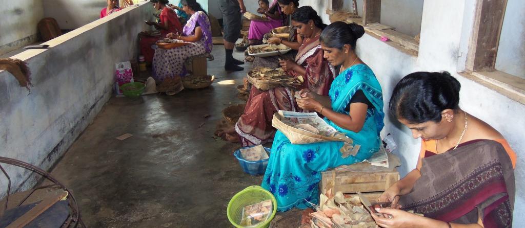 Women workers in a bidi factory in Kerala. Photo: Wikimedia Commons