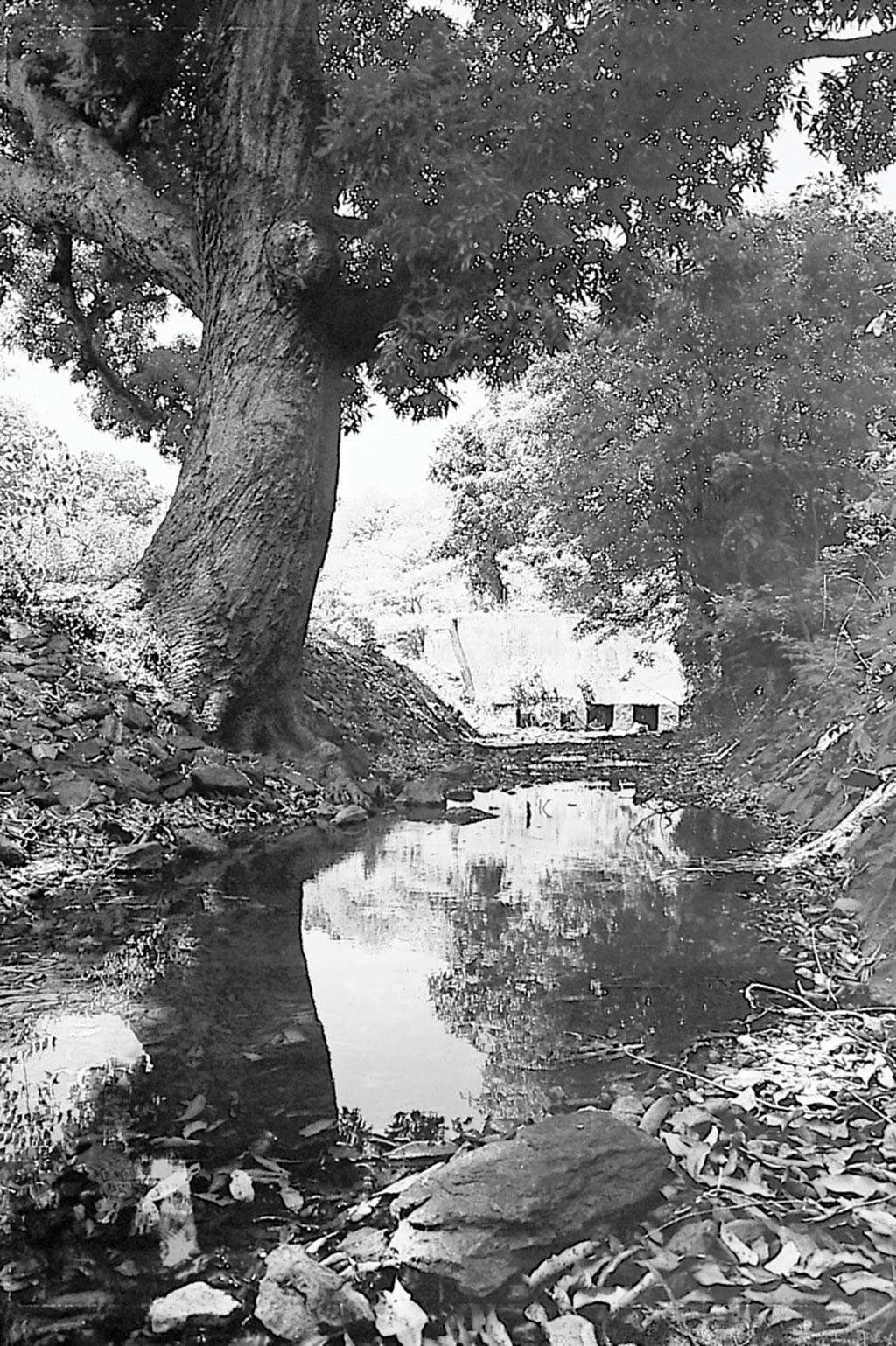 चिकमगलूर जिले में मड़गकेरे से निकलती नहर (भास्कर राव / सीएसई)