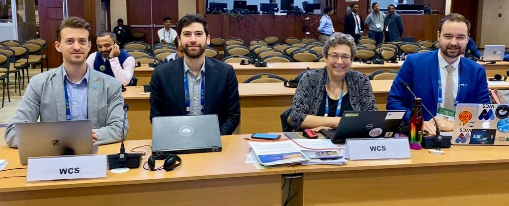 Susan Lieberman with others from WCS at the CMS CoP 13. Photo: @WCSIndia / Twitter