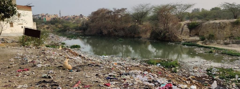 Condition of open spaces and water-bodies on the west and south-west of Sangam Vihar. Photo: CSE