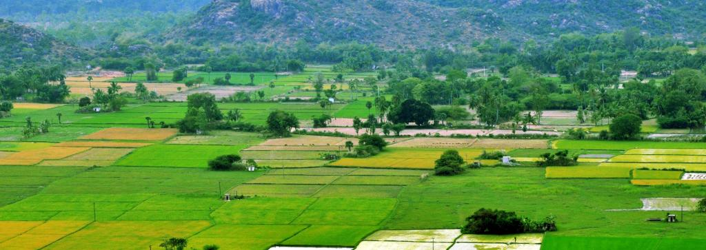 Land conflicts permeate across India's rural and urban areas Photo: Wikimedia Commons