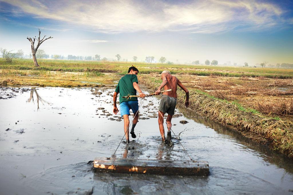 सिंचाई में 90 प्रतिशत भूजल का इस्तेमाल होता है। पंजाब और हरियाणा भूजल का अत्यधिक दोहन करने वाले राज्य हैं