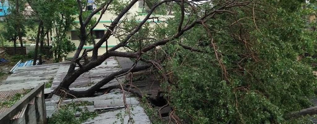 Cyclone Fani caused massive destruction. Source: Wikimedia Commons