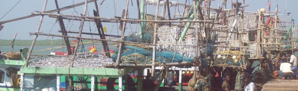 Paradip fishing harbour. Source: Ashis Senapati