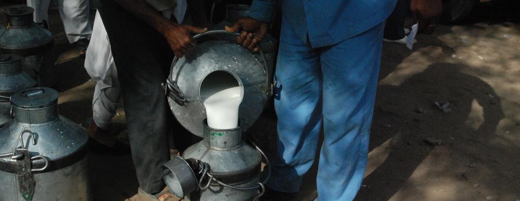 Milkmen have been barred from entering villages in several states Photo: Ravleen Kaur