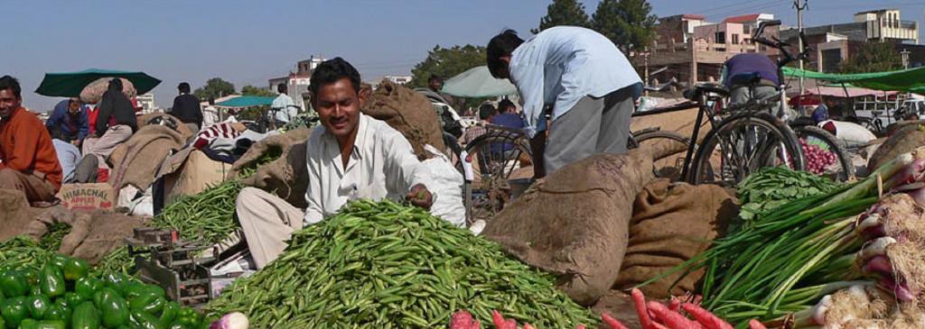A farmer sells his produce in Chandigarh Photo: Wikimedia Commons