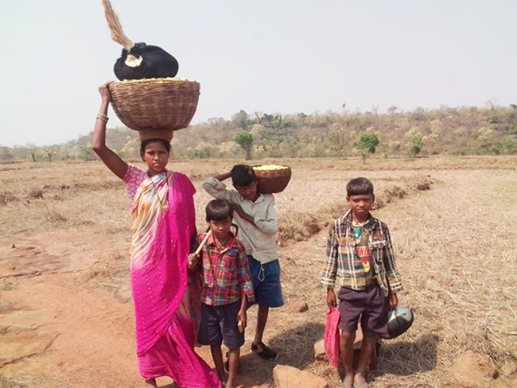 A woman returns with her children to Arjuni village after collecting mahua flowers. The village's residents are usually dependent on farming, but the lack of rain, coupled with the lockdown has forced villagers and their families to collect mahua flowers. Photo: Avdhesh Mallick