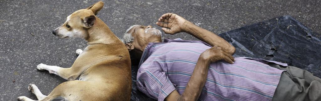 A homeless man with his dog sleeps on the street in Kolkata. Two pavement dwellers in Kolkata reportedly contracted the novel coronavirus disease (COVID-19) Photo: iStock