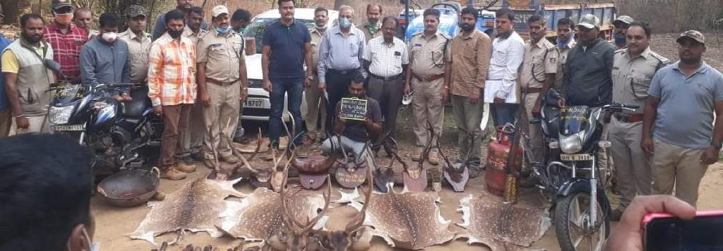 Five hunters were arrested for poaching spotted deer Photo: Nibedita Sen