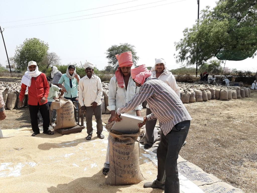 हरदा जिले में गेहूं खरीदी केंद्र। फोटो: मनीष चंद्र मिश्रा