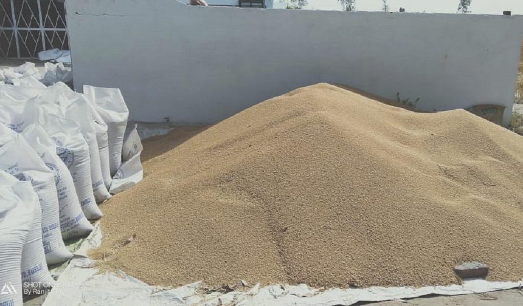 उत्तर प्रदेश के खरीद केंद्रों में गेहूं की खरीददारी बढ़ गई है। फोटो: रणविजय सिंह