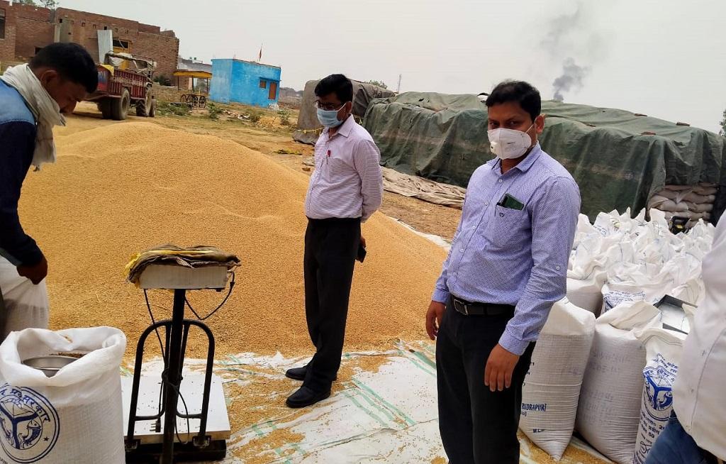 बरेली के एक क्रय केंद्र पर 2 हजार बोरी गेहूं खुले में रखा हुआ है। फोटो: ज्योति पांडे