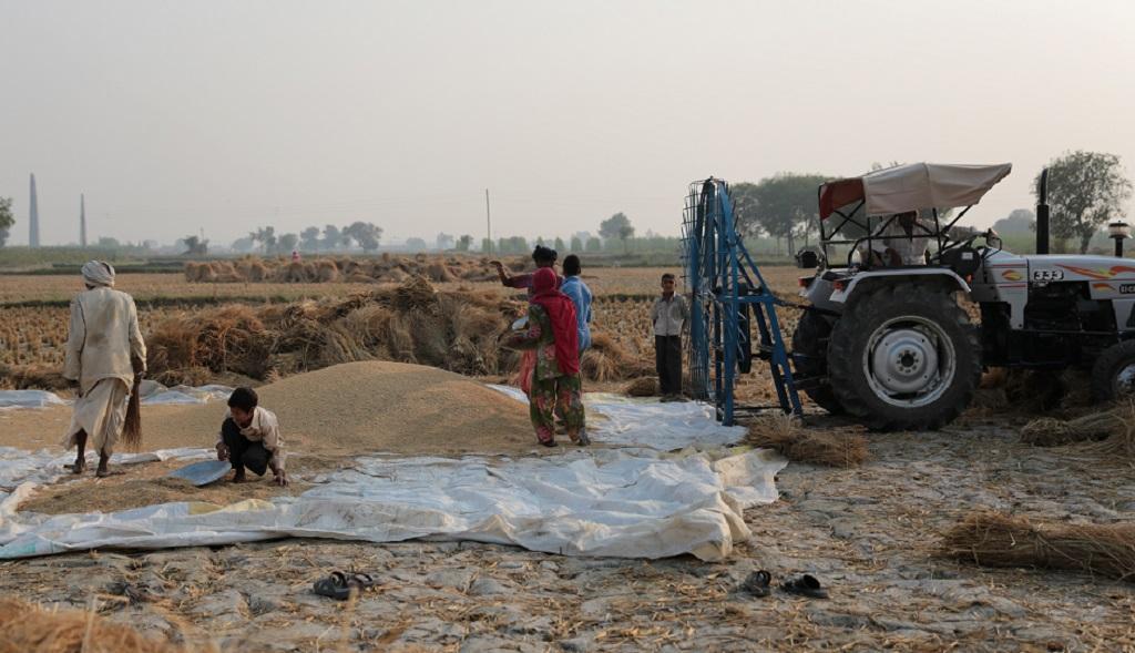 पीएम किसान सम्मान: क्या हरियाणा के 4 लाख किसानों को नहीं मिलेंगे 2,000 रुपए