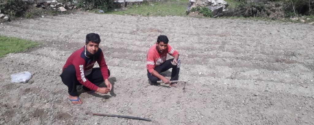 Migrant workers who returned to Uttarakhand show the land they are cultivating Photo: Harsh Bahuguna