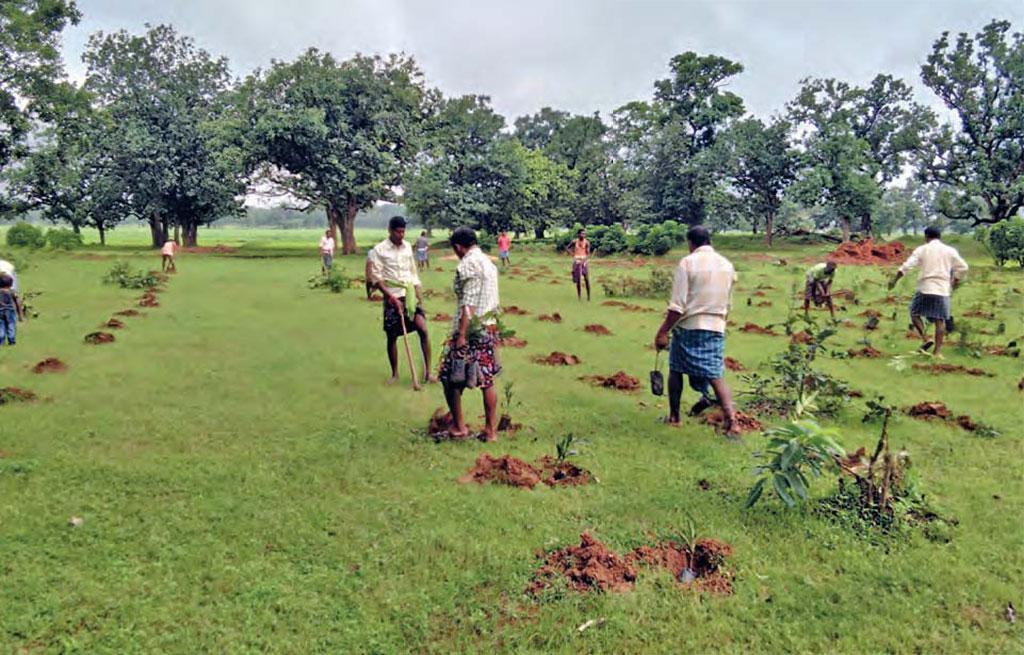 चित्र में ग्रामीण पौधों को रोपने के लिए गड्ढा करते हुए