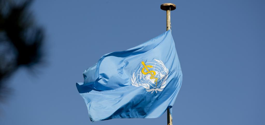 WHO's flag. Photo: Wikimedia Commons