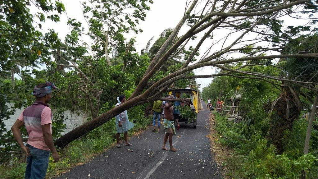 अंफान तूफान के लैंडफाल से पहले ही सुंदरवन में नुकसान के दृश्य सामने आने लगे हैं। फोटो: उमेश कुमार राय