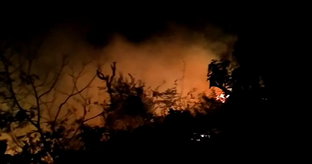 देहरादून में प्रेमनगर के पास जंगल की आग। फोटो: वर्षा सिंह