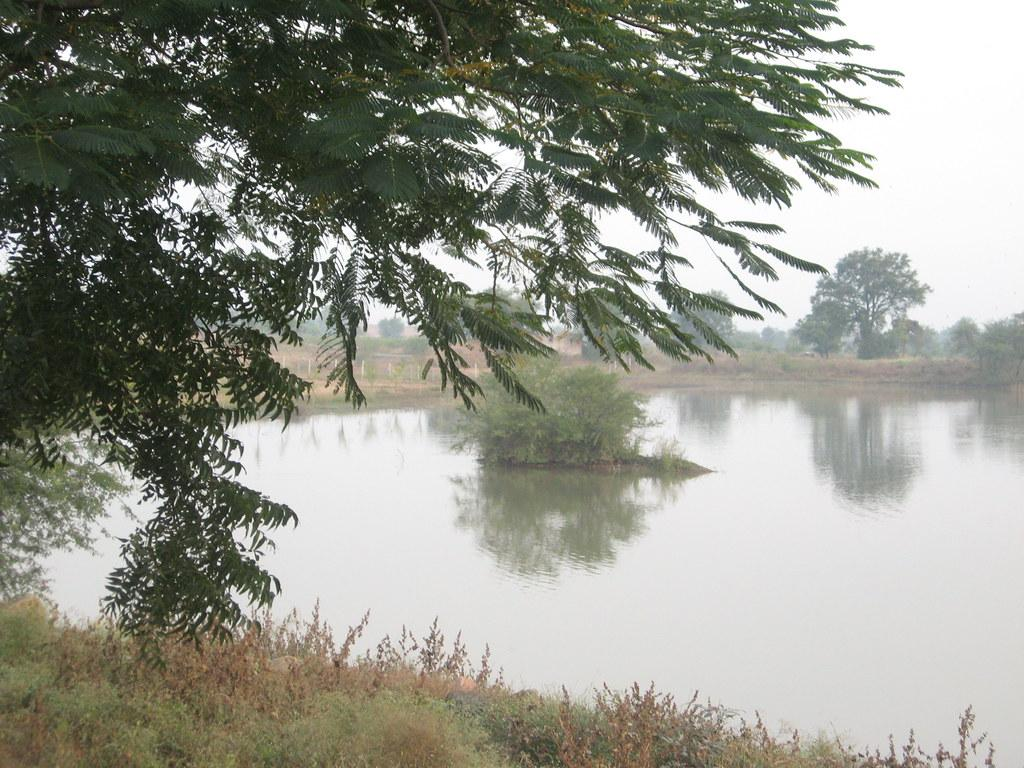 A lake in Valni village, Nagpur. The NGT in 2019 passed an order aksing states to identify, protect and restore water bodies. Photo: Flickr