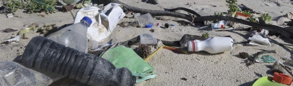 Litter on a Cape Town beach Photo: Peter Ryan