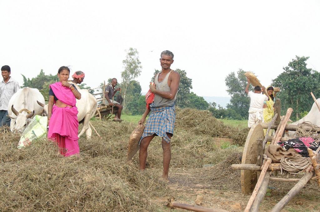 कर्जमाफी की राह ताक रहे हैं झारखंड के 17 लाख किसान