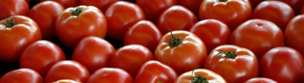 Verifying viral virus truths: Tomatoes, tiranga and TRPs