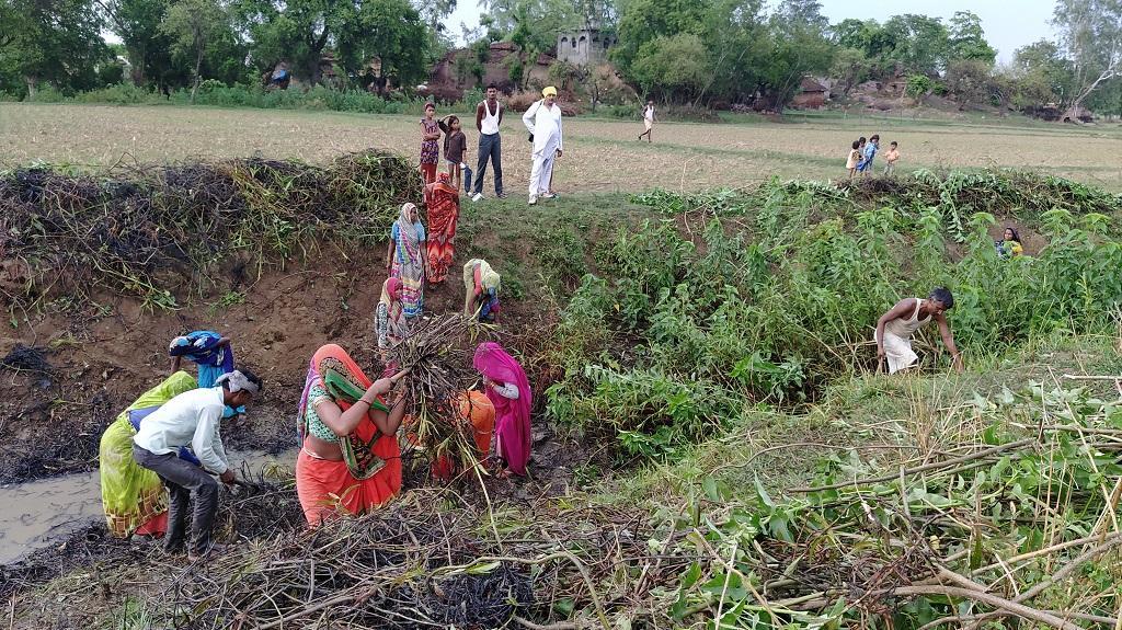 उत्तर प्रदेश के बांदा जिले के गांव भावंरपुर लौटे प्रवासी श्रमिक लुप्त हो चुकी घरार नदी की सफाई करते हुए। फोटो: अनिल सिंदूर