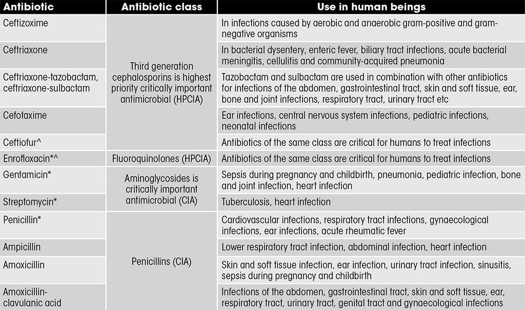 * The Department of Animal Husbandry Farmers Manual recommends these for treatment of mastitis. Penicillin is also recommended for treatment of anthrax and black quater, and streptomycin for bovine tuberculosis 