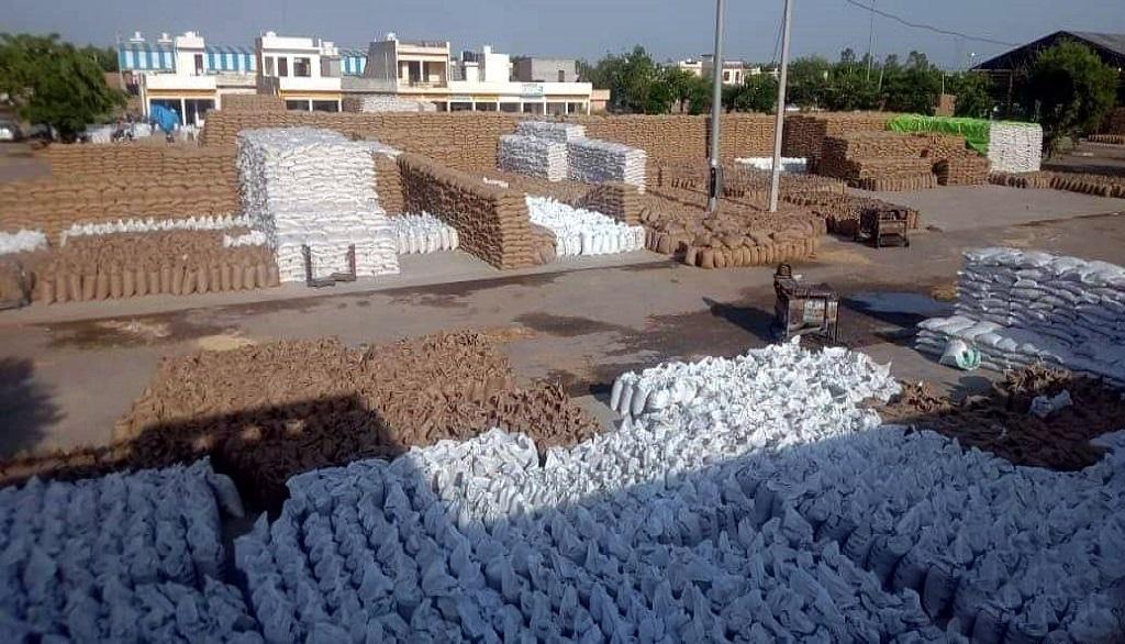 हरियाणा के करनाल के निसिंग अनाज मंडी में खुले में रखा हुआ खरीदा गया गेहूं। फोटो: शाहनवाज आलम